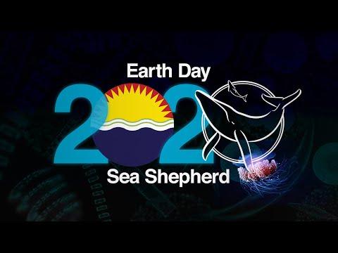 Sea Shepherd slavi Dan planete zemlje (video)