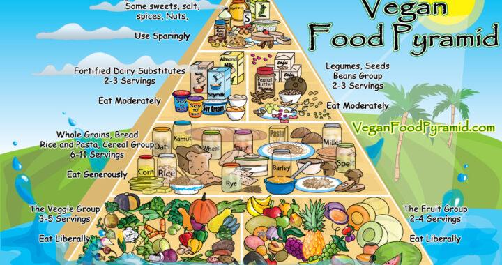 Zašto biljna ishrana?!